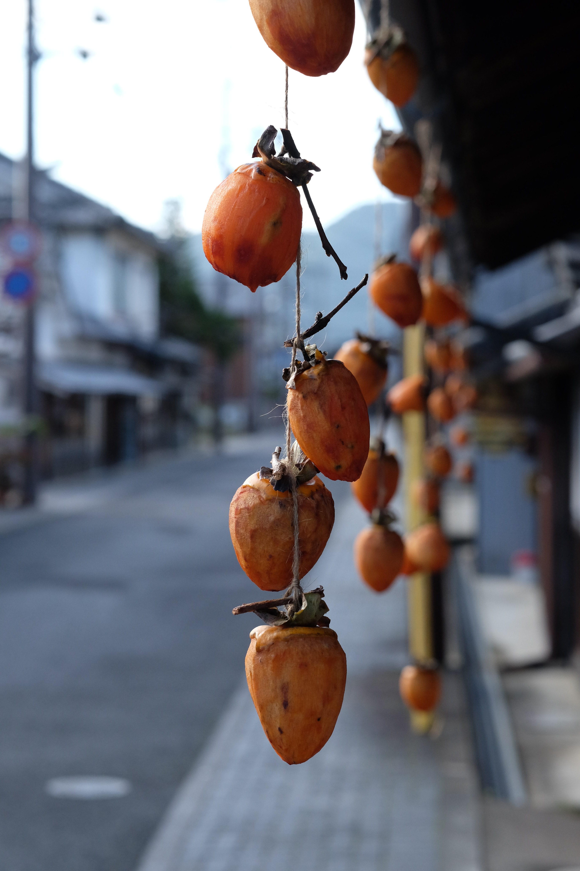 つるし柿の風情