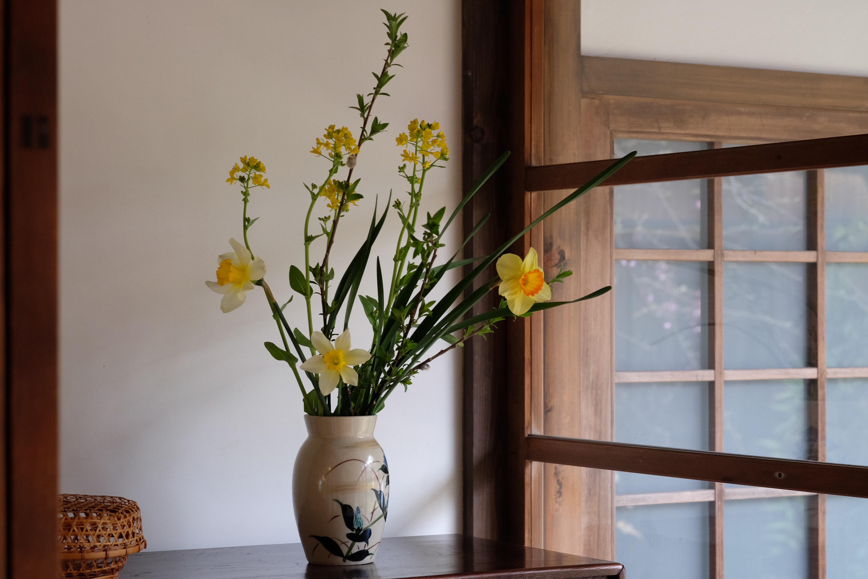 水仙と菜の花