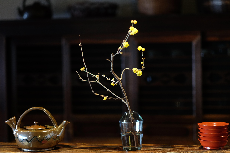 蝋梅の甘い香り