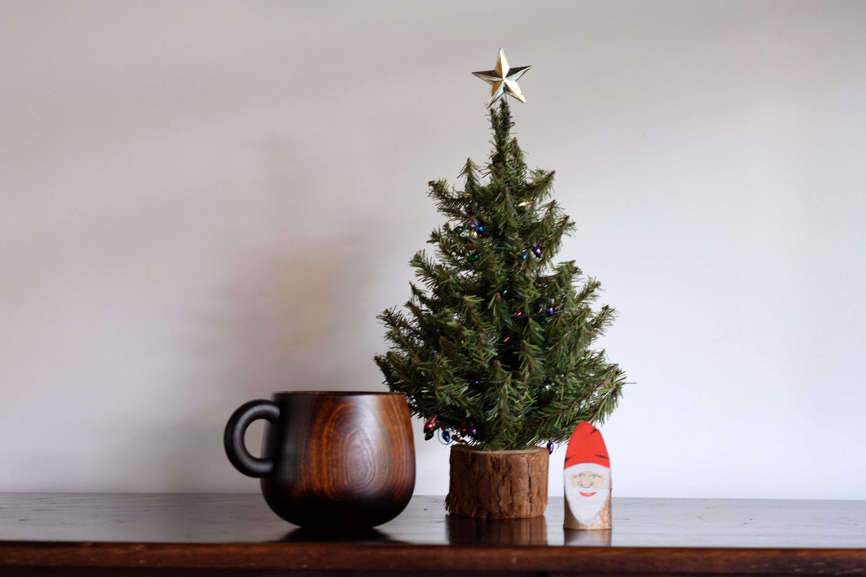 手のひらになじむトチの木のマグカップ(漆器)