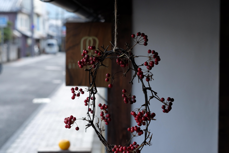 紅色の木の実と柚子